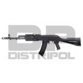 AK 74 R.I.S. DE ICS
